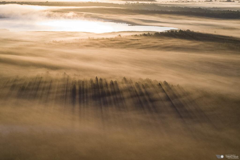 Sunrise at Parika bog